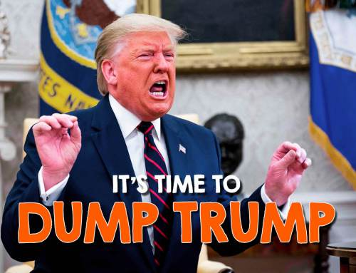 It's Time To DUMP Trump! 200,000 COVID deaths. 70,000 kids in cages. Billions in kickbacks for Corporations.
